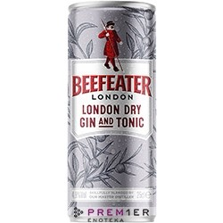 Beefeater London Dry Gin & Tonic